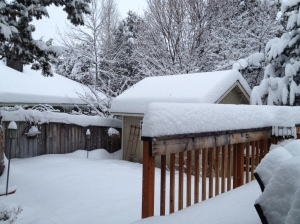 The snow on Saturday morning, can you see the difference?