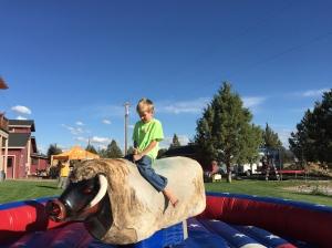 the riding bull